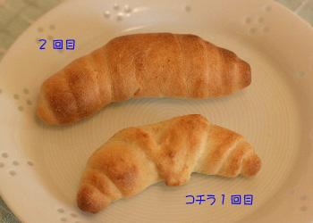 2008.01.28-006.jpg