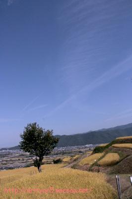 2009.09.21-191.jpg