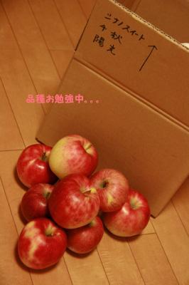 2009.10.12-174.jpg